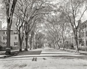 Chestnut Street, Salem, MA in 1906